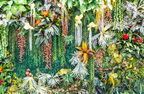 Images Of Vertical Gardens by Artificial Vertical Garden Wall Stock Photo 169 Piyachok