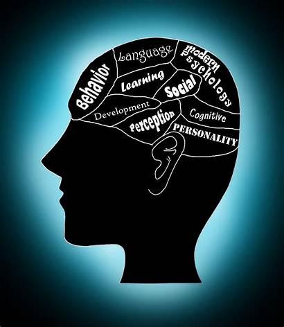 Psychology Modern Human General Mind Reading Cognitive
