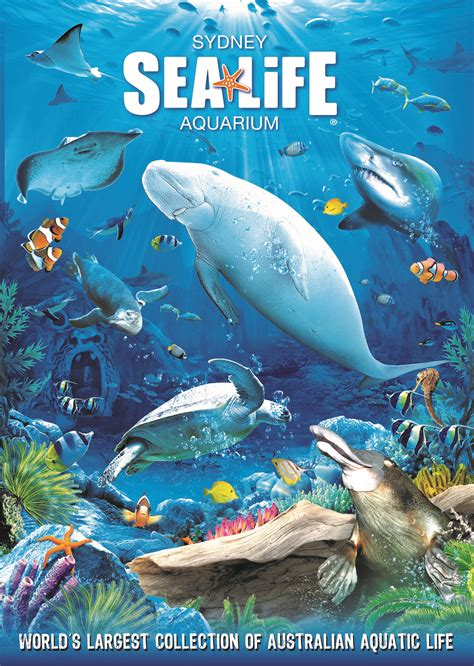sea aquarium prices aussie l l tickets