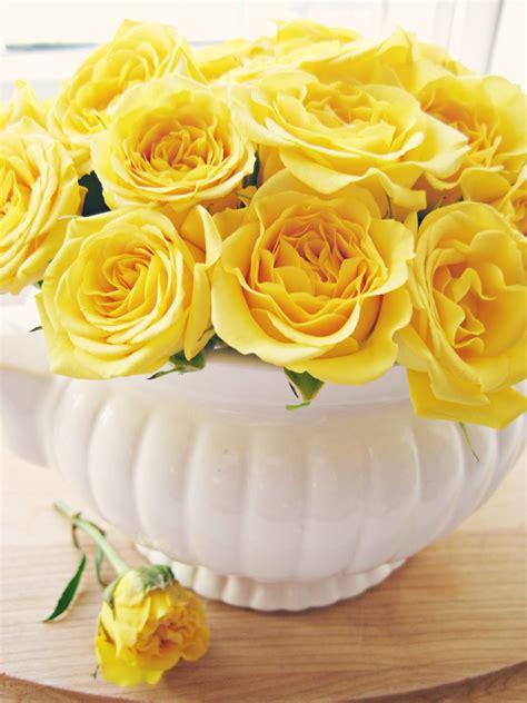 happy  home yellow roses