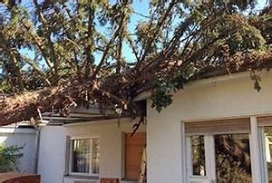 Was Kostet Baum Fällen : preise f r baumf llung abfluss reinigen mit hochdruckreiniger ~ Orissabook.com Haus und Dekorationen