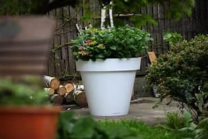 Große Blumentöpfe Für Außen : blument pfe aus polyethylen greenspired ~ Sanjose-hotels-ca.com Haus und Dekorationen