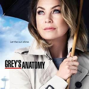 Grey's Anatomy - Stagione 12