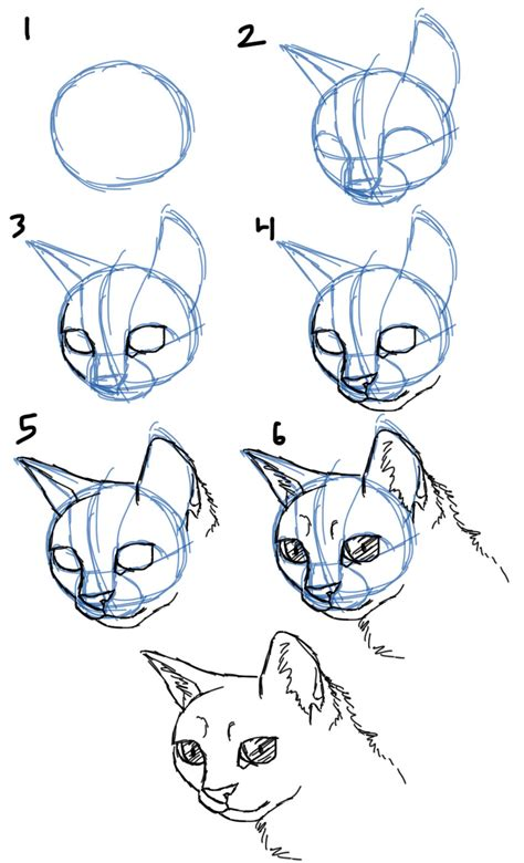 savanna williams   draw cats faces heads