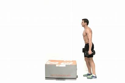 Dumbbell Step Exercises Ups Muscle Health Building