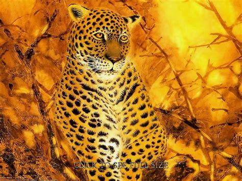 Fantasy Art Animal Leopard Wallpaper Top Wallpapers