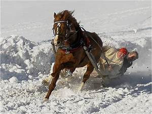 Sprüche Winter Schnee : zitate aphorismen spr che weisheiten sinnspr che und bauernschlaues zum thema silvester und ~ Watch28wear.com Haus und Dekorationen