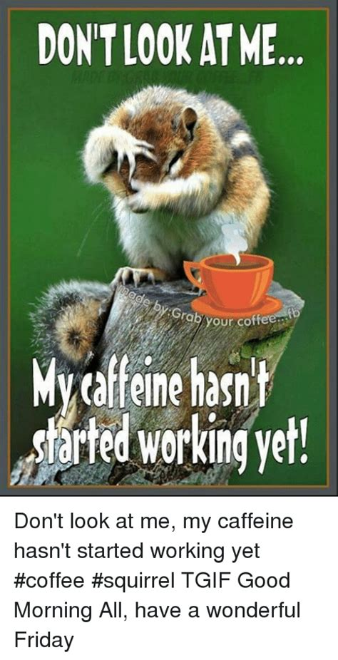 Enjoy these 12 hilarious coffee memes that every coffee lover can relate to! DONT LOOK AT ME Grab Your Coffe to Mycaffeine Hasnt Darted ...