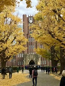 Making New Friends At Tokyo University  Todai   U2013 Thomas Clausen