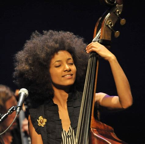 uncategorized the upright bass site we don t call it a bass