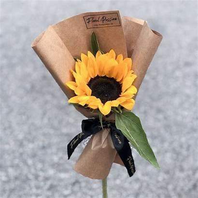 Sunflower Single Stalk