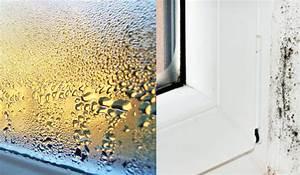 Kondenswasser Am Fenster : richtig l ften im sommer winter auch im keller ~ Frokenaadalensverden.com Haus und Dekorationen