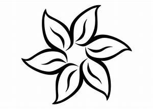 Coloriage Fleur Edelweiss.Fleur Dessin Simple Coloriage Fleur Simple Fleur Colorier