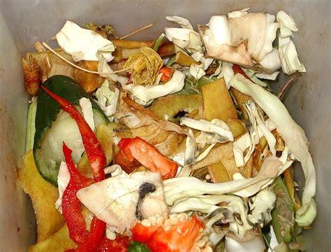 kitchen compost bin food waste