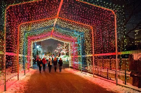 christmas lights in the city of logan zoolights is best winter lights display in chicago