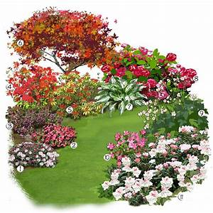 Plantes à Suspendre : les plantes de terre de bruy re en folie jardin ~ Premium-room.com Idées de Décoration