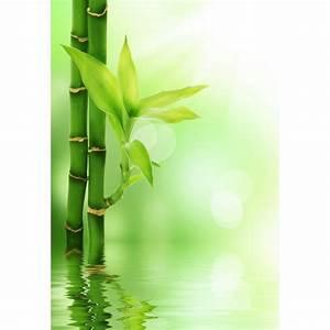 Papier Peint Geant : papier peint g ant bambous art d co stickers ~ Premium-room.com Idées de Décoration