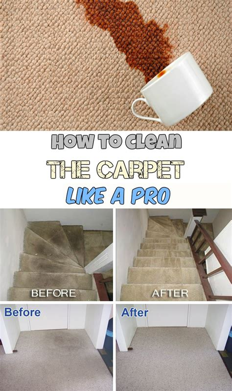 clean  carpet   pro getcleaningtipsnet