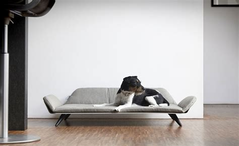 post modern pet furniture day beds