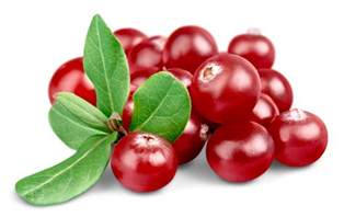 thanksgiving foods your skin will thank you for cranberries