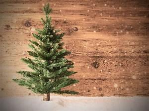 Wann Stellt Man Weihnachtsbaum Auf : warum stellt man einen weihnachtsbaum auf alle infos rund um den weihnachtlichen baum ~ Buech-reservation.com Haus und Dekorationen