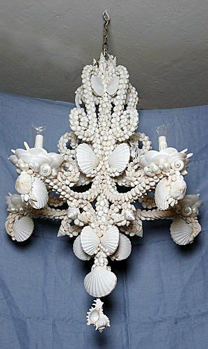 Seashell Chandelier Lighting by 58 Best Sea Shell Chandeliers And More Images On