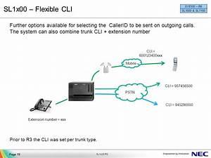 Nec Dsx 10 Wiring Diagram