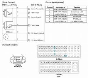 Kia Optima  Etc  Electronic Throttle Control  System