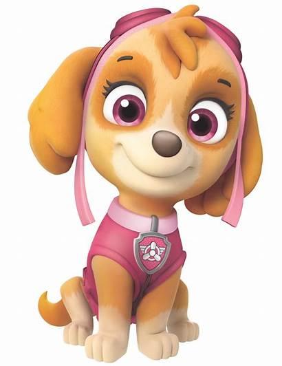 Skye Paw Patrol Pup Friends Know Fly