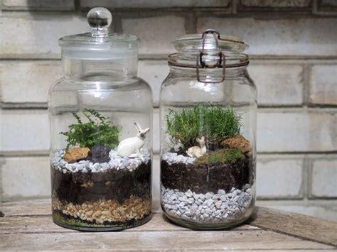 comment faire un terrarium diy comment fabriquer terrarium diy terrarium terrariums diy et terrarium bocaux