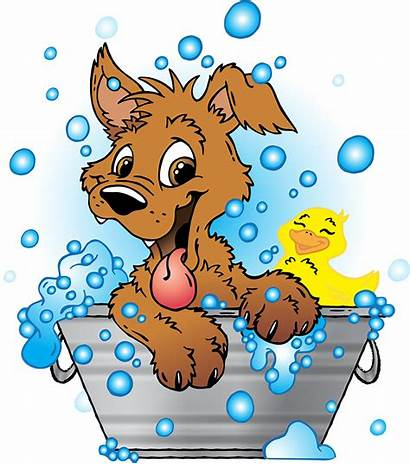 Dog Bath Grooming Clipart Tub Salon Transparent