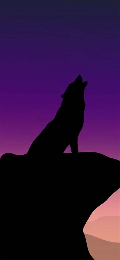 Wolf 4k Howling Minimalism Iphone Wallpapers Xs