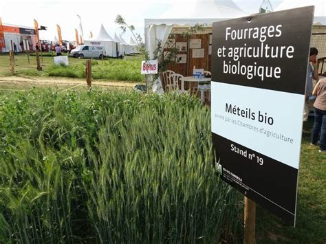 chambre d agriculture vosges salon de l 39 herbe et les fourrages évènement national à