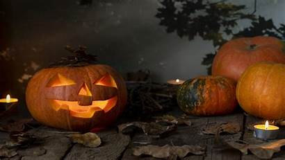 Halloween 4k 5k Pumpkin Forest Mystic Glowing