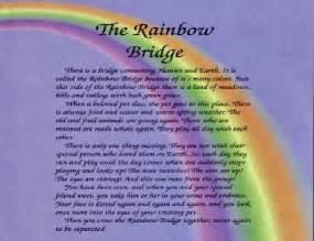 the rainbow bridge poem for cats possum s journal
