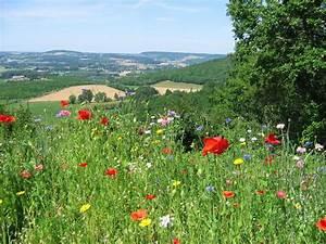 Ramoneur Lot Et Garonne : en images vos plus belles photos de paysages dans le lot ~ Premium-room.com Idées de Décoration