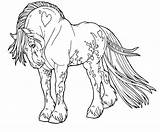Horse Coloring Pages Palomino Print sketch template