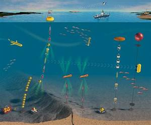 Scientists Gear Up to Launch Ocean Observing Networks ...