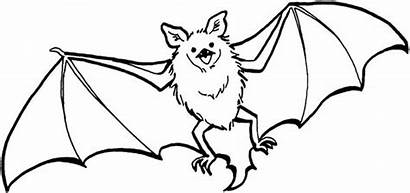 Bat Bats Coloring Flying Pages Printable Drawing