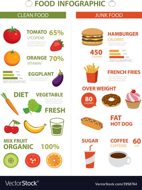 healthy  junk food infographic royalty  vector image
