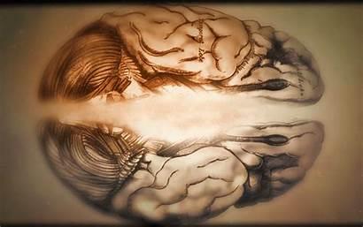 Neuro Brain Wallpapers Desktop Generic Dr Neuroscience