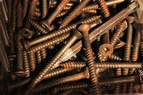 screws  stock photo rusty screws