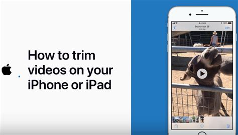 how to cut on iphone how to trim on your iphone or iphone