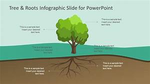 Tree  U0026 Roots Infographic Slide For Powerpoint