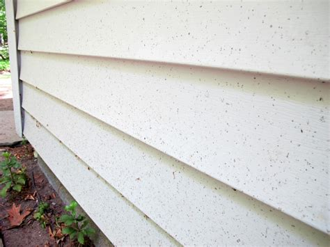 Learn The Best Way To Clean Vinyl Siding