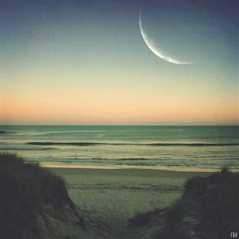 background tumblr hipster beach  background check