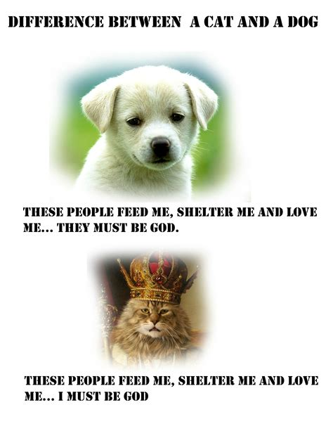 these People Feed Me Shelter Me And Love Me They Must
