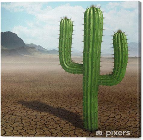 leinwandbild kaktus  der wueste pixers wir leben um