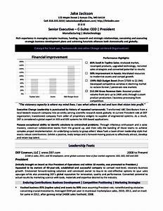 Executive style resumes free samples examples format for Executive style resume