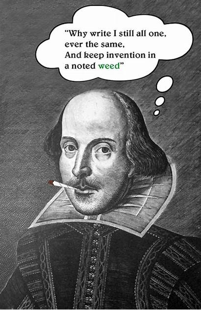 Sonnet Shakespeare Did